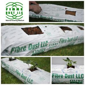 coir grow bags for hydroponic vegetable production