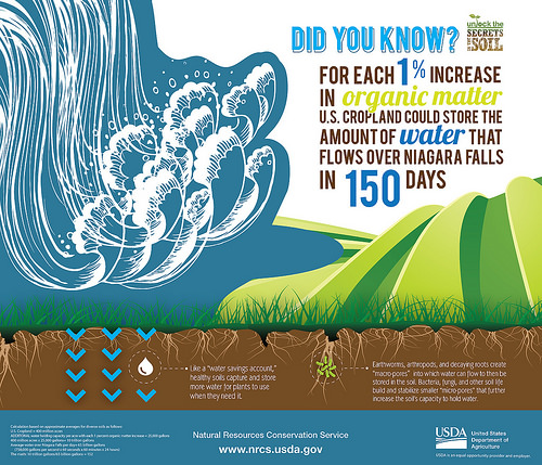 Healthy Soil is 'Water in the Bank'